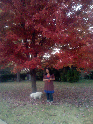 Me under the red tree