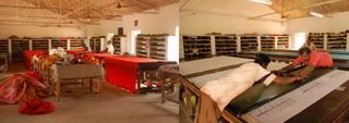 Workshop eucalyptus
